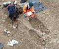 Asnelles-fouilles-de-sCpultures-denfants--.jpg