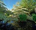 Jardins-du-Domaine-Albizia-Normandie--Stphane-Maurice_Corlet-Presse-1.jpg