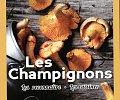 les-champignons_72dpi.jpg