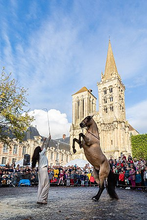 LISIEUX - © Thierry Houyel